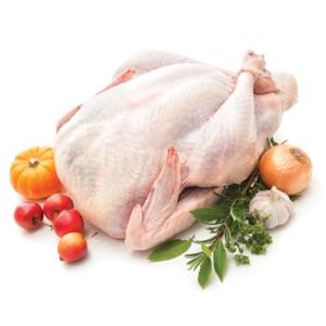 Kurczak kukurydziany – tuszka